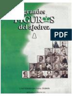 Grandes Figuras Del Ajedrez N_ 1-Final