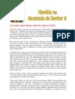 HOMILIA NA ASCENSÃO DO SENHOR A - 2017