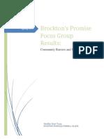 bp community garden focus group report 2017