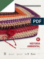 historia ambiental.pdf
