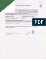 ANEX-4.pdf