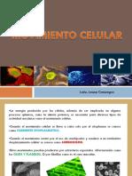 movimiento celular.pdf