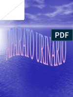 UriApoyoRDRA