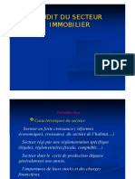 Audit secteur immobilier.pdf