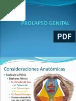 presentacionprolapsogenital-090303152914-phpapp02