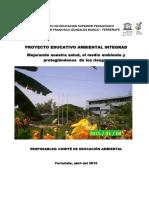 MODELO PEAI.pdf