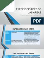 ESPECIFICIDADES DE LAS ÁREAS (14).pptx