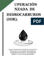 Recuperación Avanzada de Hidrocarburos (IOR)
