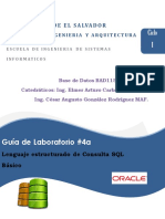 Guia04BAD115_SQLBasicoOracle.pdf