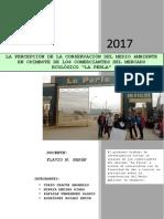 Gestion - Ambiental 25.05.2017