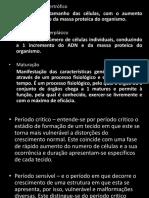 DM-FCP