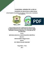 Proyecto de Investigacion - Metodologia de Investigacion Cientifica- Galletas Funcionales-concluido
