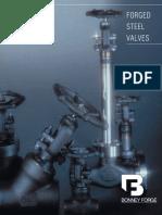 FSV.pdf