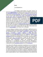 Povos indígenas do Brasil.docx