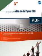 modelo larry greiner.pdf