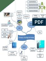 mapa psicologia y sociologia del trabajo