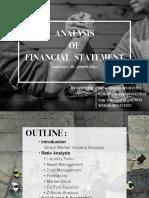 Nike vs Adidas Financial Ratio Analysis