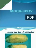 Bacterial Disease