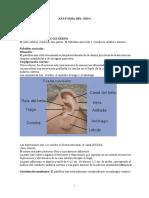 Anatomía de Oído