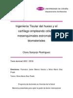 SanjurjoRodriguez_Clara_TD_2016.pdf