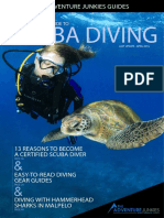 Diving-Quick-Starter-Guide.pdf