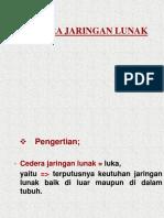 cederajaringanlunak-140416211652-phpapp02