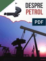 Despre Petrol