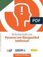 Voluntariado Con Personas Con Discapacidad Intelectual