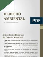 1a DERECHO AMBIENTAL - Antecedentes, Declaraciones, Const