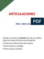 teoria-5ARTICULACIONES Y MÚSCULO.pptx