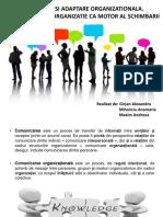 Comunicare Si Adaptare Organizationala