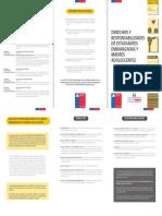 Der_y_resp_estudiantes_embarazadas_y_madres_adolescentes (2).pdf