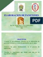 PANETON_2009.pdf