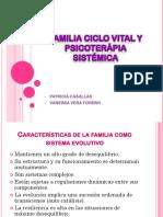 Familia Ciclo Vital y Psicoterápia Sistémica