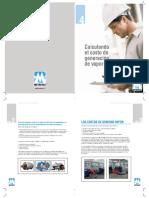 COSTOS DE VAPOR.pdf