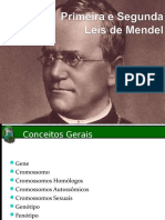 Leis de Mendel Com Questões