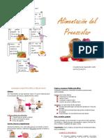 diptico preescolares
