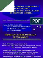 Paniculectomia.ppt