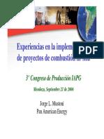 Combustion_insitu_mustoni.pdf