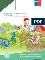2014Estructurafuncionesyrelacionessegundobasico.pdf