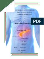 Resumen Páncreas (extraído de Moore y Rouviere)