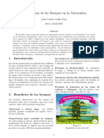 Ensayo Importancia Bosques