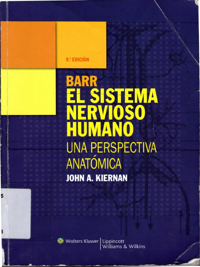 El Sistema Nervioso Humano BAAR
