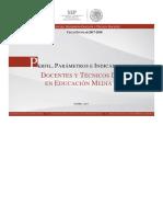 (2) 2017-2018 Perfiles, Parámetros e Indicadores Para Docentes