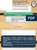 Malformaciones Congenitas Del Pulmon