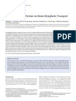 Effect of Body Posture on Brain Glymphatic Transport