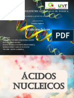 Presentación de ácido nucleicos