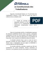 Direitos+Constitucionais+dos+Trabalhadores.pdf