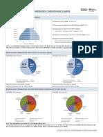 Peru Perfil Ecv 2014