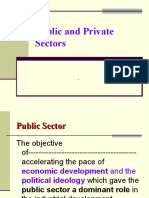 30781989 Public and Private Sector
